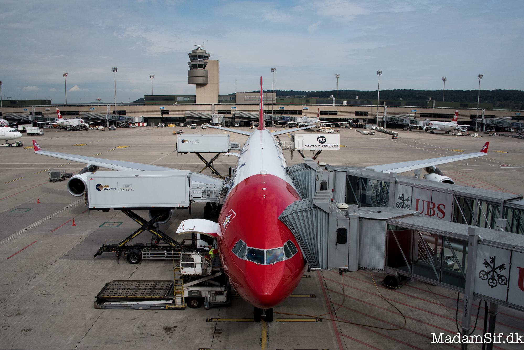 En Edelweiss Airbus A340 bliver gjort klar i hoved og mås. Den skal til Rhodos.