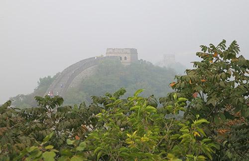 I smog står mur og busk i skjul.