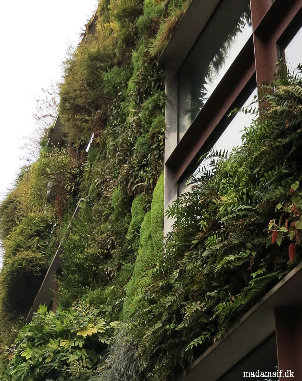 Mur végetal hedder den grønne facade, og den ligger på Quai Branly.