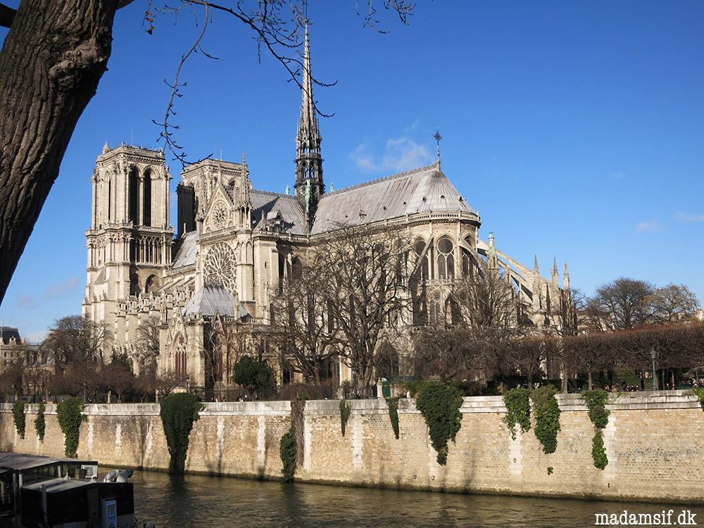 Altid fotogen er hun, Notre-Dame de Paris.