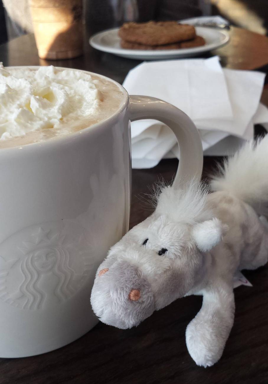 """En """"koppe kaffe"""" i lufthavnen er en fast afrejsetradition. Hesten Bent bortkom senere på tragisk vis i sikkerhedskontrollen i Manchester."""